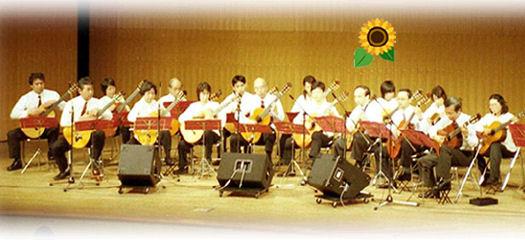 ギタークラブ ソレイユ画像6